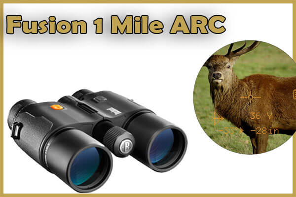 best rangefinders for hunting