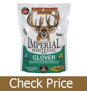 Best Overall Deer Attractant