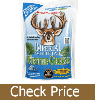 Best Deer Attractants Reviews