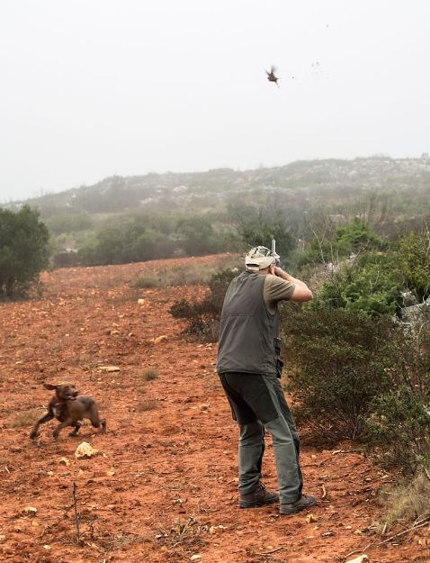 13 Tips for Hunting Tall Partridge