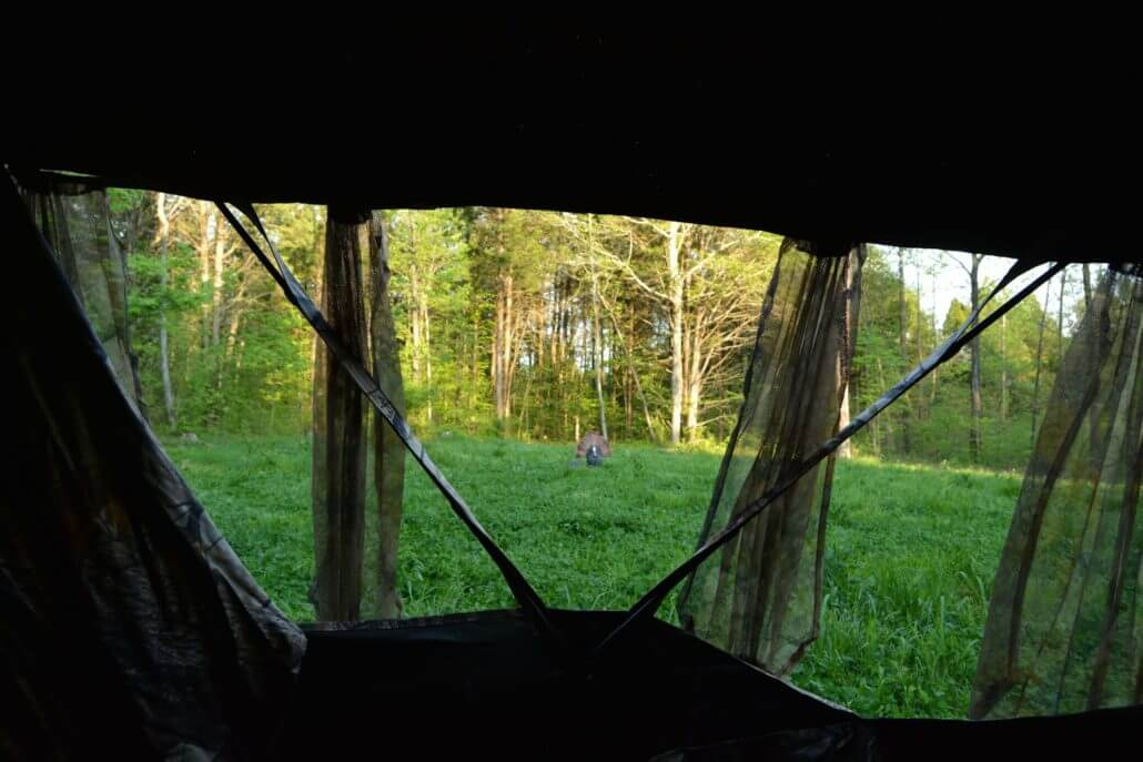 best bow hunting blind