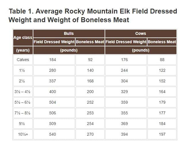 How Much Does A Bull Elk Weigh