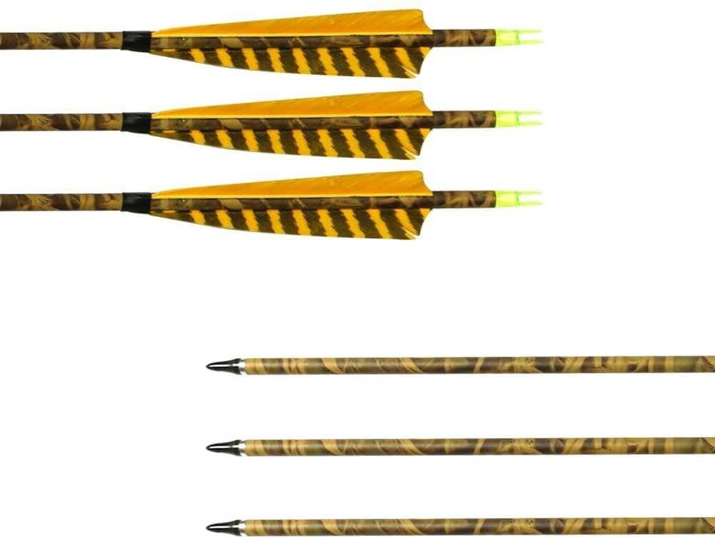 Archery Sharly 31Inch Carbon Arrow