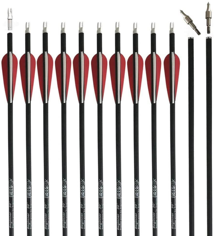 Reegox Archery Arrows